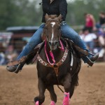 2014 Clayman Rodeo