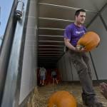 FUMC Pumpkins