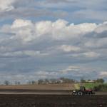 Corn Planting Season