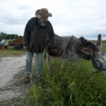 Charlie Hill & his donkey