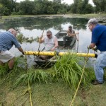 Berry Springs Pond Cleanup