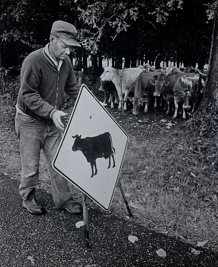 Calvln Smith, one of three generations of dairy farmers, prepares to move some his cows across the road for milking.  Photo taken during the 1976 Missouri Photo Workshop.