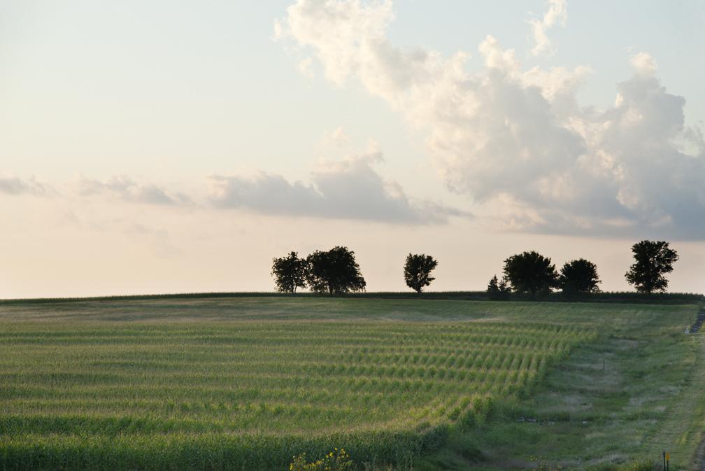 Hay, Sunset & Moon