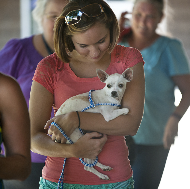 Emily Talley left the shelter with Jenna, a one-year-old chihuahua.