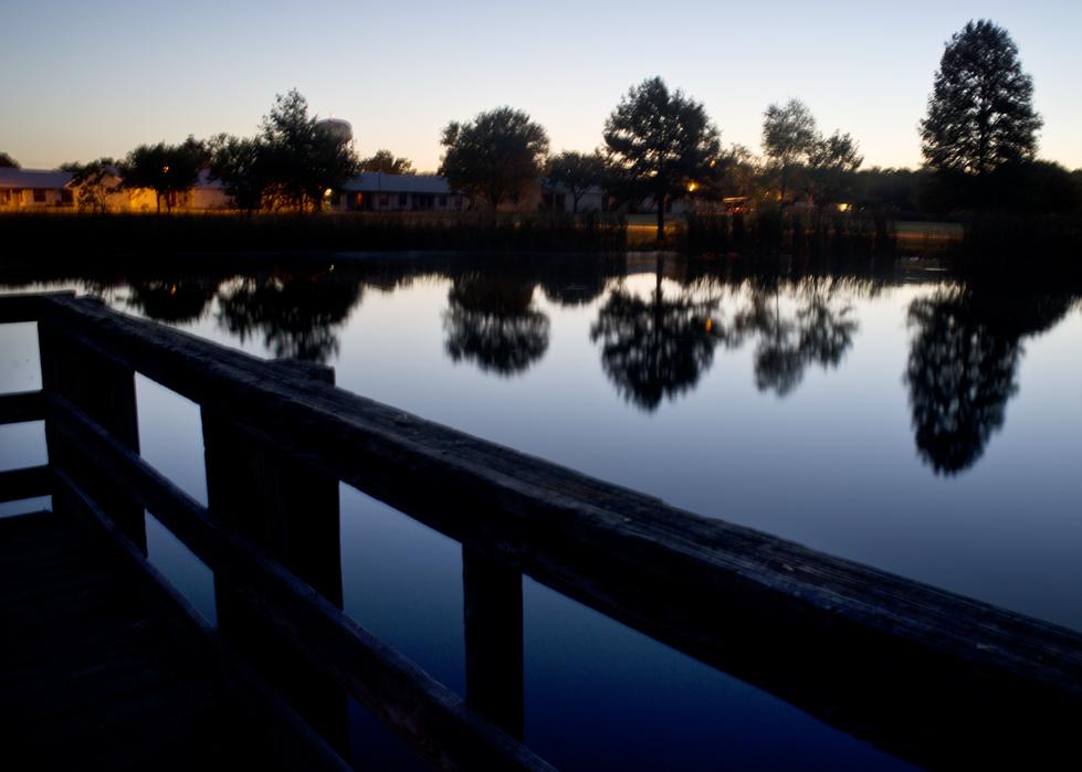 Morning Light @ Bull Branch Park