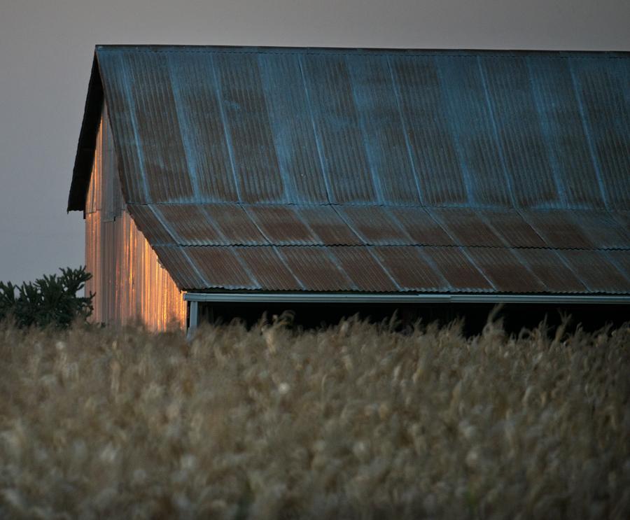 Shiny Barn & Corn