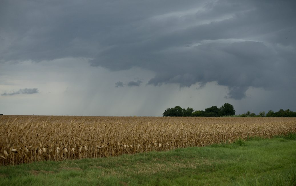 Stormy East Wilco County